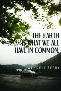 40 Best Environmental Quotes To Inspire You To Save The Planet